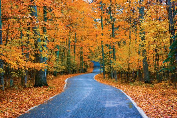 How to Spend a Fall Weekend in Northern Michigan