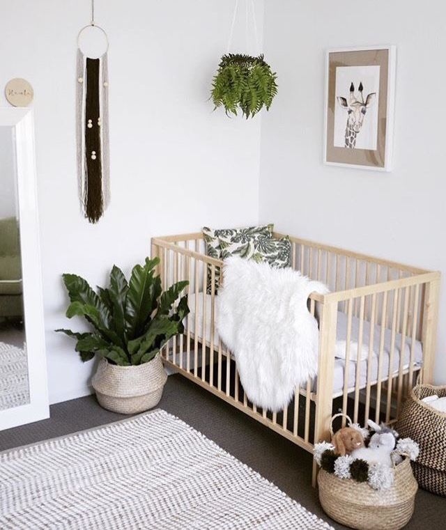 plant in basket on floor next to crib, plant hanging above baby crib